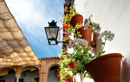 Calleja De Las Flores, Cordoba