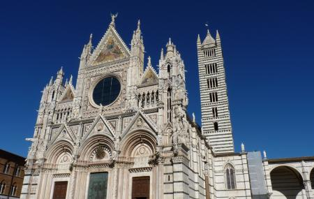 Siena Cathedral Image
