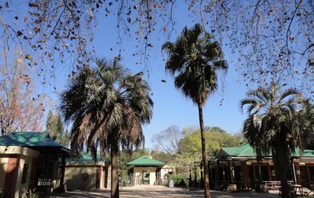 Kwazulu-natal Botanical Gardens Image