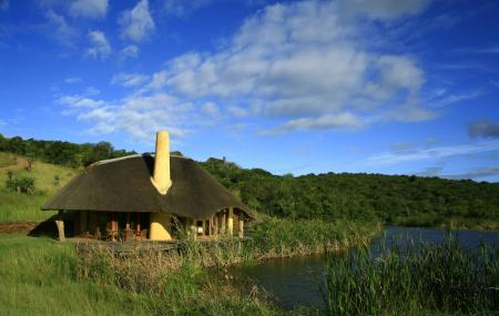 Tala Privated Game Reserve Image