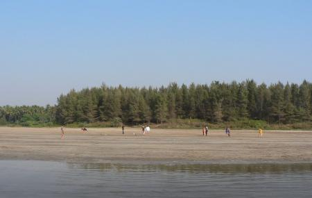 Awas Beach, Alibag