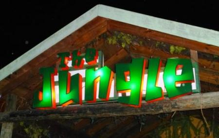 The Jungle Nightclub, Sports And Grill Bar Image