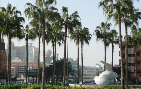 Fish Roundabout Image