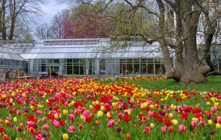 Botanical Gardens Or Botaniska Tradgarden Image