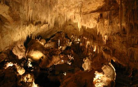 Mammoth Cave Image