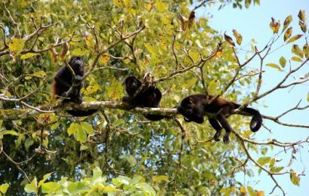 Arenal Natura Ecological Park Image