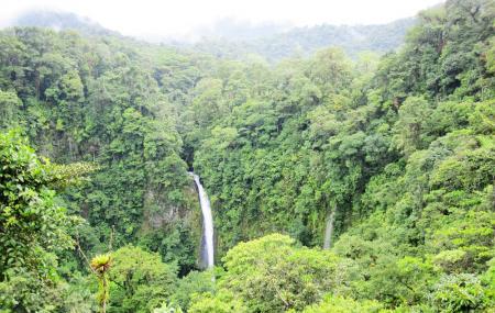 La Fortuna Waterfall Image