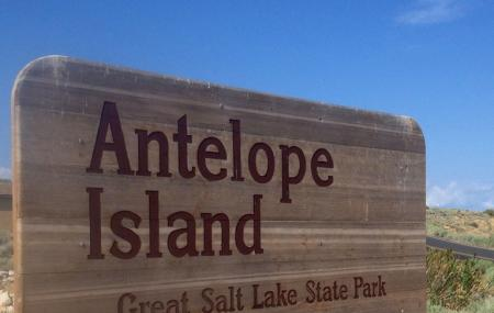 Antelope Island State Park Image