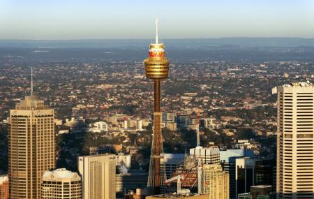 Sydney Tower Image