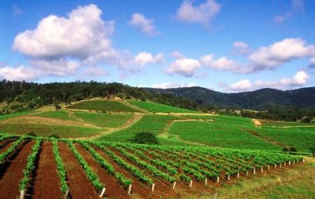 Hunter Valley Wineries Image