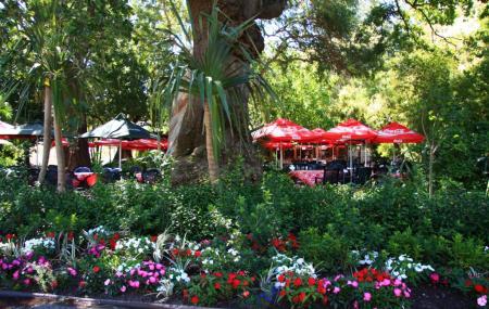 Company's Gardens Image