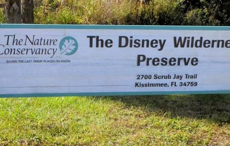 The Disney Wilderness Preserve Image