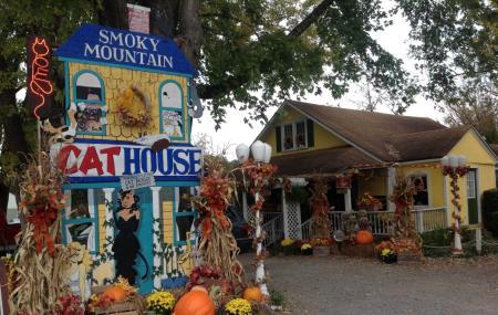 Smoky Mountain Cat House Image