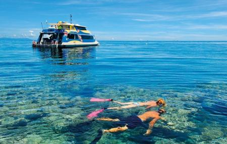 Opal Reef Image