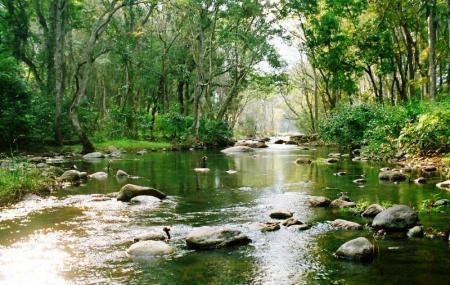 Chinnar Wildlife Sanctuary Image