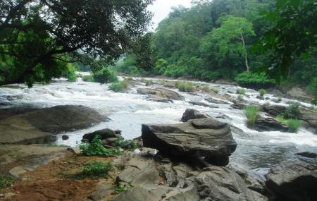 Attukal Waterfalls Image