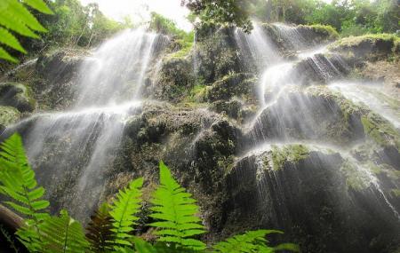 Tumalog Falls Image