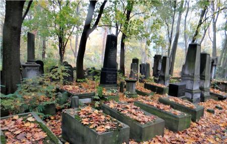 Powazki Cemetery Image