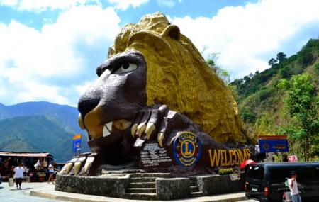 Lion's Head Image