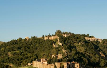 Castillo De Gibralfaro Image