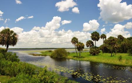 Myakka River State Park Image