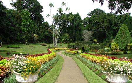 Royal Botanical Gardens, Port Of Spain   Reviews   Ticket Price ...