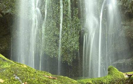 Baskins Creek Falls Image