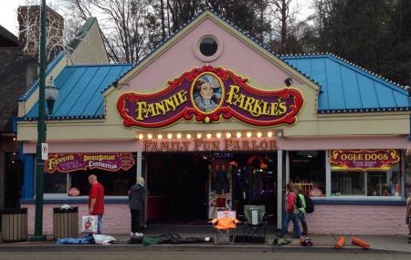 Fannie Farkle's Family Fun Parlor Image