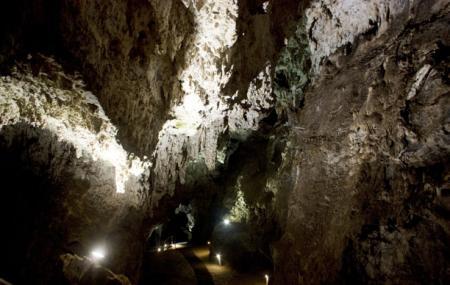 Sterkfontein Caves Image