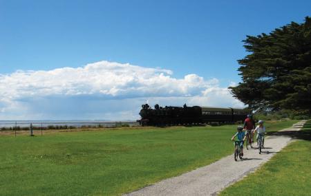 Bellarine Rail Trail Image