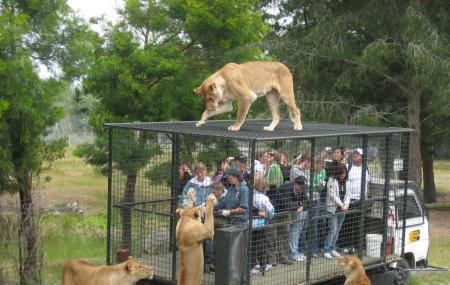 Orana Wildlife Park Image