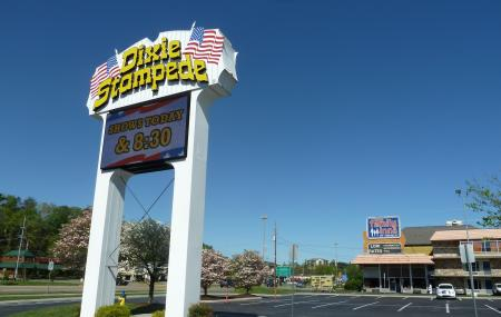 Dixie Stampede Dinner And Show Image
