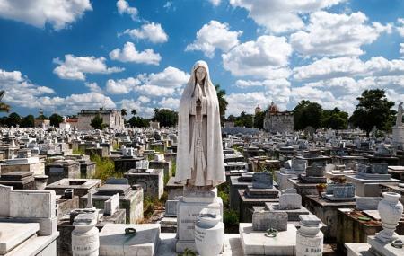 Colon Cemetery  Or Necropolis Cristobal Image