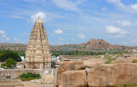 Vijayanagar Image