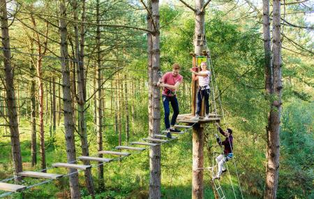 Go Ape Treetop Adventure Course Saint Louis Ticket