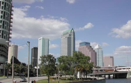 Bayshore Boulevard Image