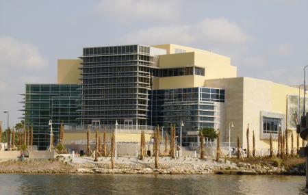 Tampa Bay History Center Image