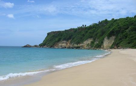 Wilderness Beach Image