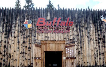 Buffalo Nations Luxton Museum Image