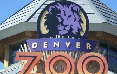 Denver Zoo Image