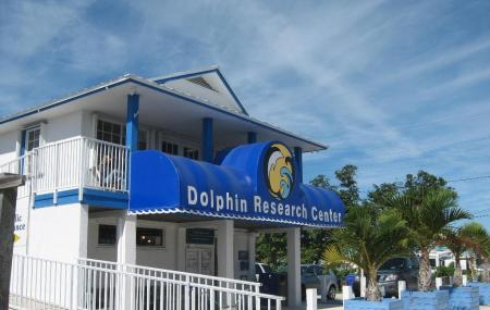 Dolphin Research Center Image