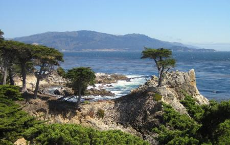 17-mile Drive At Pebble Beach Image