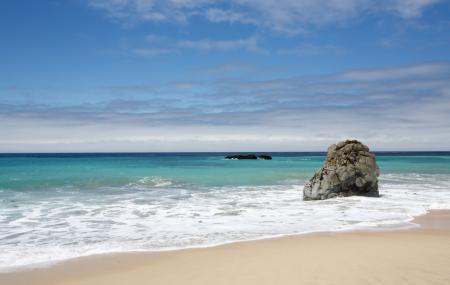 Garrapata Beach Image