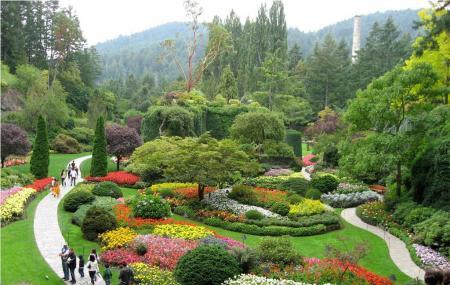 Butchart Gardens Image