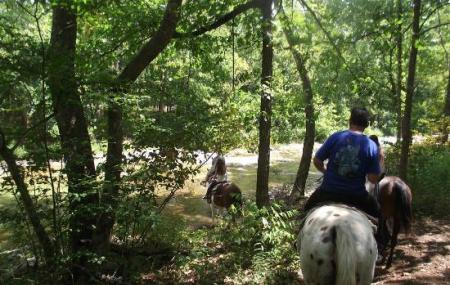 Bear Creek Trail Rides And Stable Image