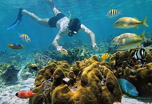 Culebra Island Adventure, Culebra