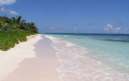 Flamenco Beach Image