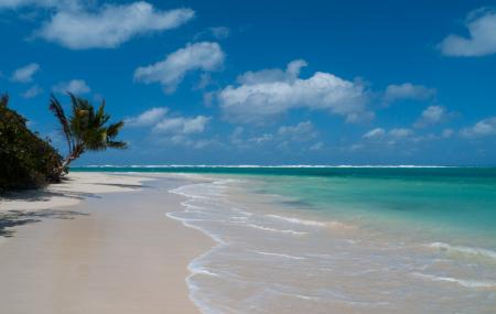 Tamarindo Beach Image