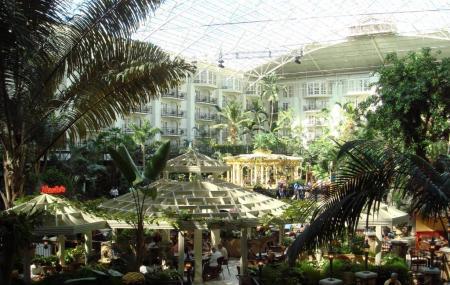 Opryland Hotel Gardens Image