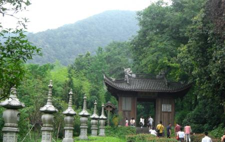 Fei Lai Feng Image